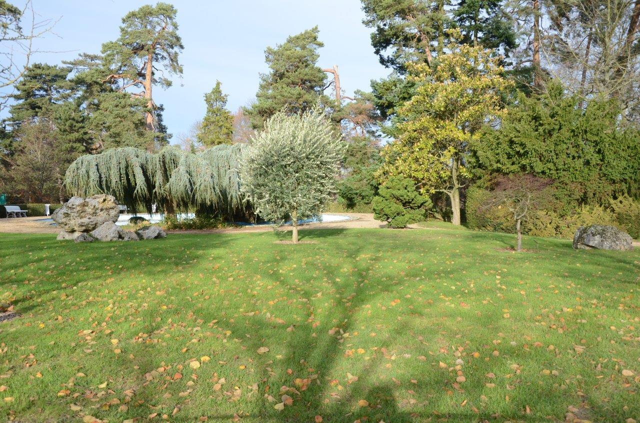 parc du château de Voisins