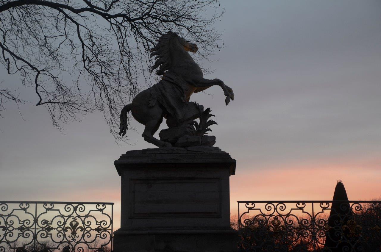 parc du château de St Germain