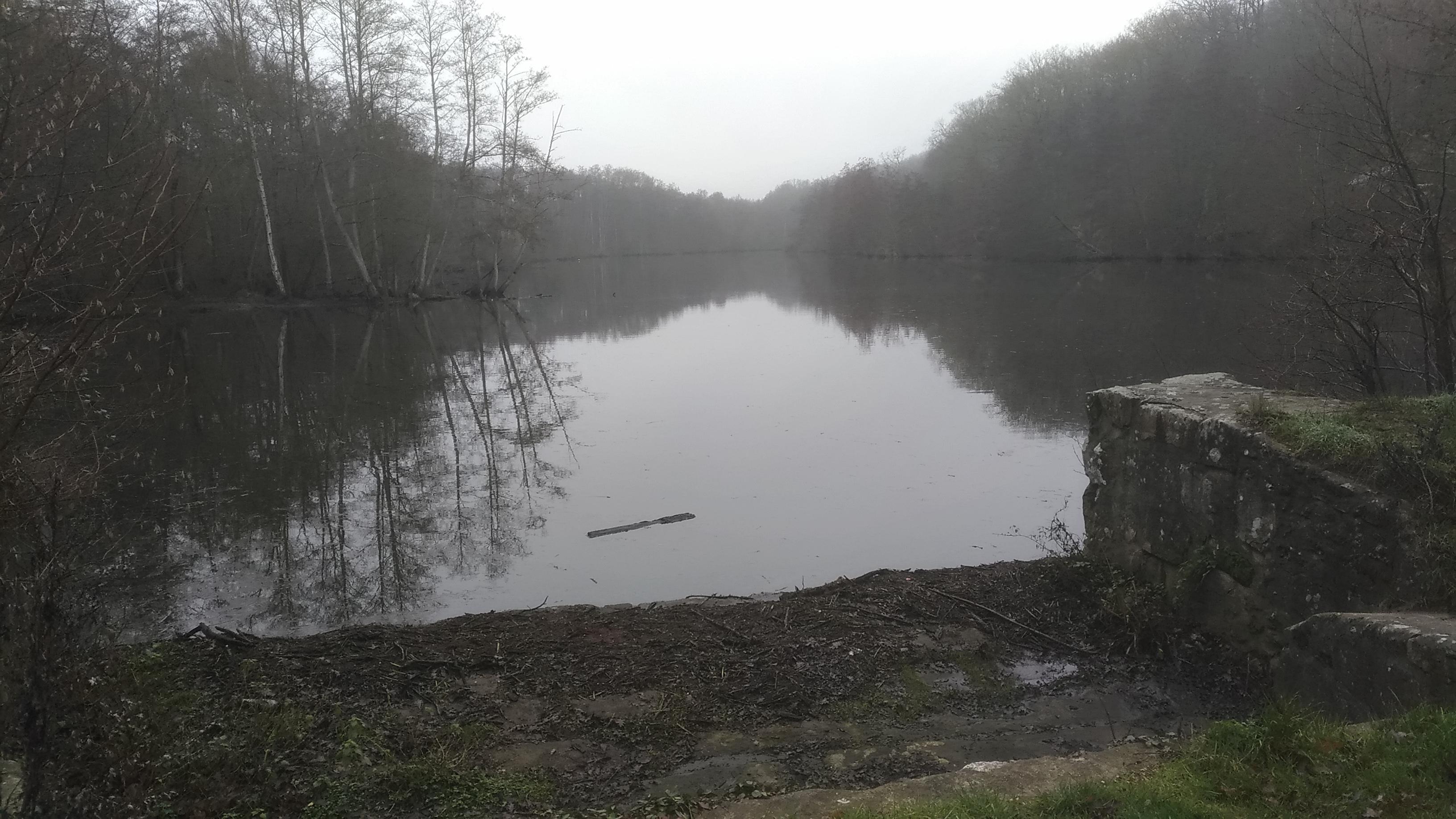 étang de Cernay