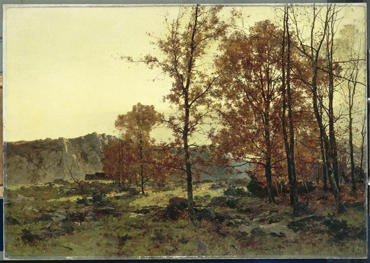 Pelouse-Montjoie
